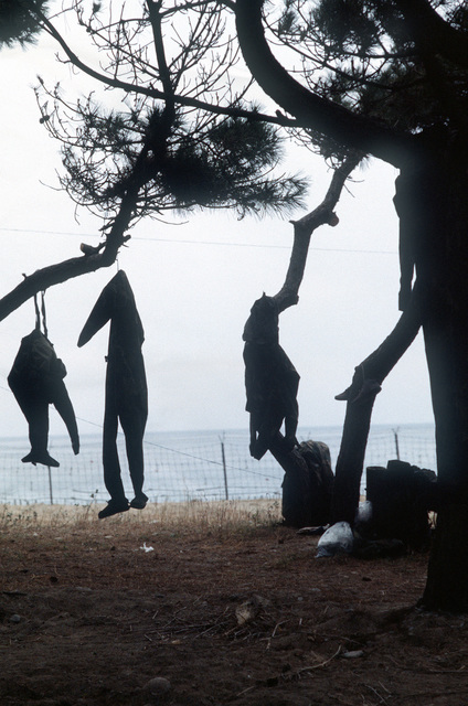 Dry suits belonging to members of a U.S. Navy sea-air-land (SEAL) team hang from tree branches to dry during the joint South Korean/U.S. exercise Valiant Blitz '90