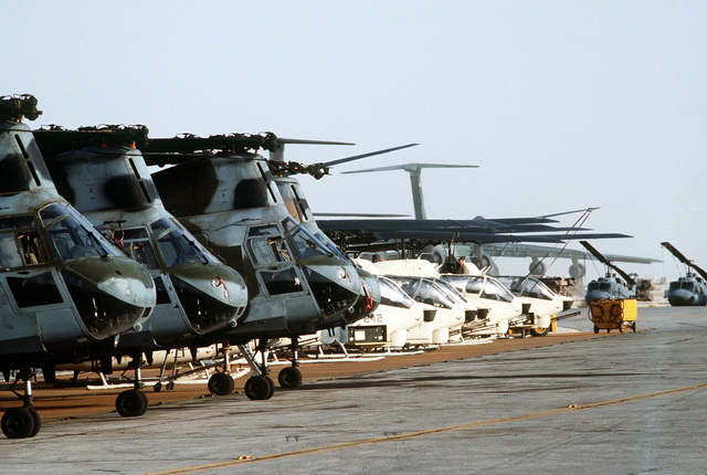 Four Marine Corps CH-46E Sea Knight helicopters, foreground, and six AH-1 Sea Cobra helicopters sit idle on the flight line at Landing Zone 32 (LZ-32) Site Alpha during Operation Desert Shield