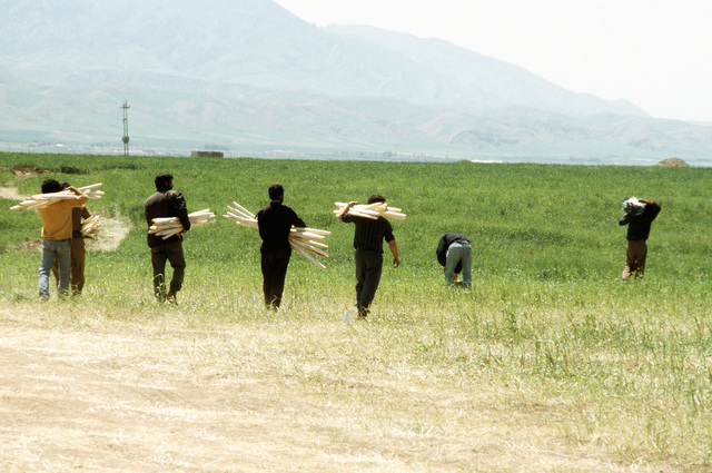 Kurdish men carry support poles across a field as they help to erect additional tents at a refugee camp near Zakhu, Iraq. U.S. and allied troops established the camp as part of Operation Provide Comfort, a multinational effort to aid the thousands of Kurds who fled their homes after fighting broke out between Kurdish groups and Iraqi government forces following Operation Desert Storm