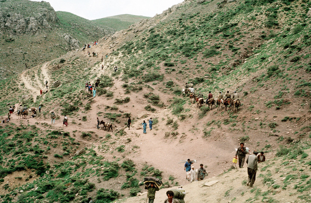 Kurdish refugees travel between campsites during Operation Provide Comfort, an Allied effort to aid the refugees who fled the forces of Saddam Hussein in northern Iraq