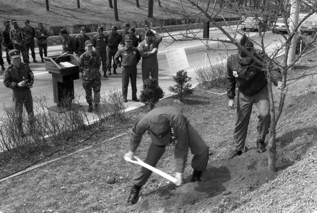 LGEN Ronald Fogelman, commander, 7th Air Force, stabilizes a tree as LGEN Kun Hae Cho, commander of the Korean component of the Air Component Command, shovels soil during Korea's Arbor Day celebration. A tree is being planted as part of the event and is symbolic of the country's future growth and development