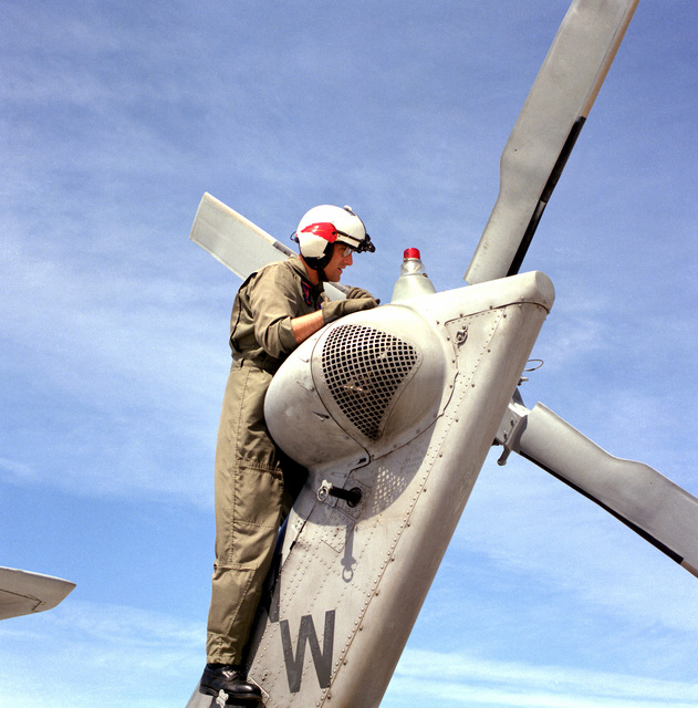 LT. CMDR. Rick Coyle of Helicopter Combat search and Rescue (SAR)/Special Warfare Support Squadron 5 (HCS-5) makes a preflight check of the tail rotor gearbox on one of the squadron's HH-60H Sea Hawk helicopters prior to a SAR training mission. HCS-5 is a reserve squadron that was activated for Operation Desert Shield and Operation Desert Storm.