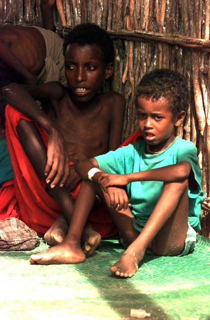 Straight on, Close-up shot of two Somali children sitting on a green mat in the bamboo hut. The children are very emaciated looking. US Congressmen (not shown) visited this village and feeding center to see conditions firsthand. This mission is in direct support of Operation Restore Hope