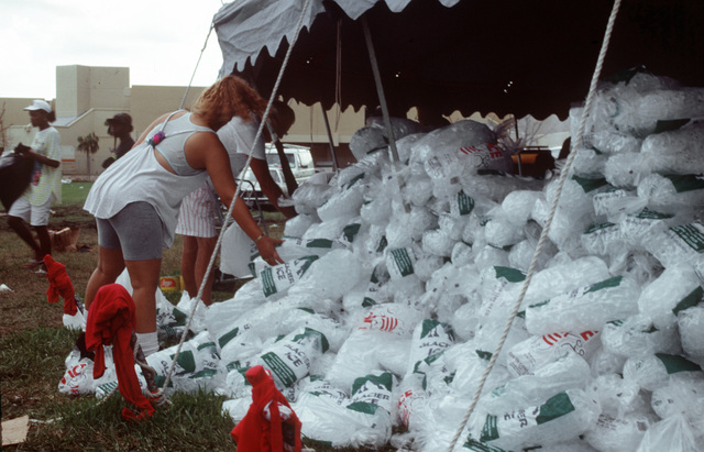 Area residents pick up bags of ice at a relief station outside Campbell Drive Middle School. The distribution point is one of several set up for victims of Hurricane Andrew, which struck the area on August 24th