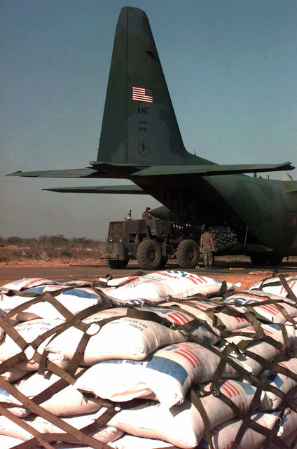 Right rear view of the open cargo doors on the tail of a USAF C-130 Hercules cargo plane. A large four-wheeled forklift removes a pallet of cargo from the rear of the C-130. In the foreground is a strapped down pallet with bags of grain. The aircraft and its crew are from 179th Airlift Group, Ohio Air National Guard, Mansfield, Ohio. The food is destined for the Somali towns of Baidia and Bardera. The aircraft delivered more than 45,000 pounds of food for the two locations. This mission is in direct support of Operation Restore Hope