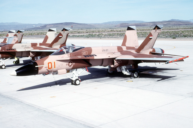 A Strike Fighter Squadron 127 (VFA-127) F/A-18A Hornet aircraft stands on the flight line. The Hornet is painted with a camouflage paint scheme for use in an aggressor role