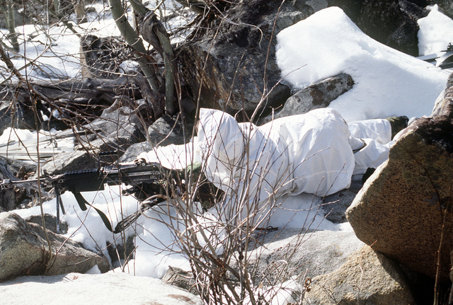 A Marine automatic rifleman from India Company, Third Battalion, Eighth Marines lies prone and ready to fire an M249 Squad Automatic Weapon (SAW) with an attached blank firing apparatus and bipod. He takes cover between large snow covered rocks as he waits to ambush an objective during cold weather training at Silver Creek