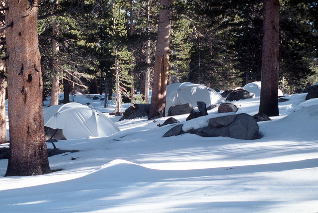 The bivouac site of India Company, Third Battalion, Eighth Marines is concealed by the use of white camouflage tents. It is located in the midst of lightly wooded snow cover in the Silver Creek Training area