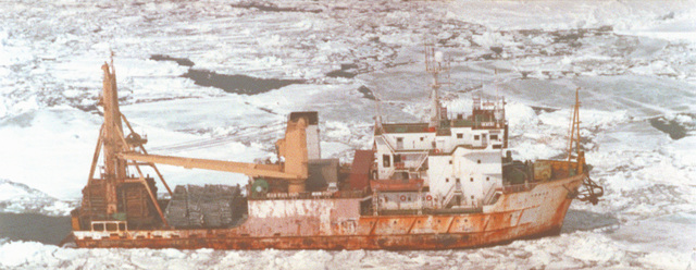 An aerial starboard side view of the Russian research ship TRIAS plowing through packed ice. The ship is carrying a commercial cargo of wood