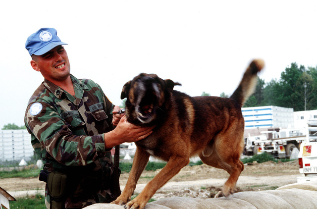 STAFF SGT. Terry Smith, a dog handler from the 26th Area Support Group (ASG), Kaiserslautern, GE, with Robby.(Exact date unknown)