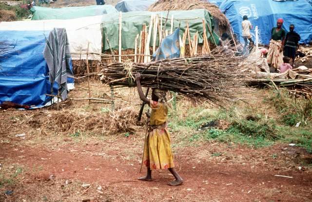 A view of a female refugee carrying a bundle of twigs on her head through the refugee camp near Goma
