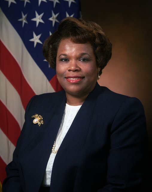 Portrait of DoD Ms. Debra A. Muse, Director, Office of Equal Employment Opportunity. (U.S. Army photo by Mr. Scott Davis) (Released) (PC-192341)