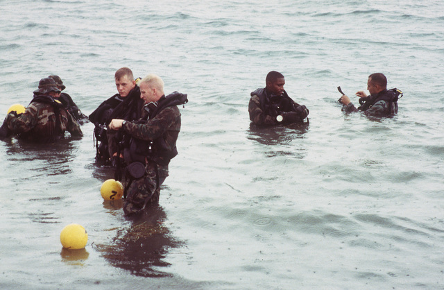 U.S. Marine Corps active duty for training (ACDUTRA) reservists from the 3rd Force Reconnaissance Company in Mobile Alabama use the buddy system during diver training as they prepare to enter the waters of Fleming Key
