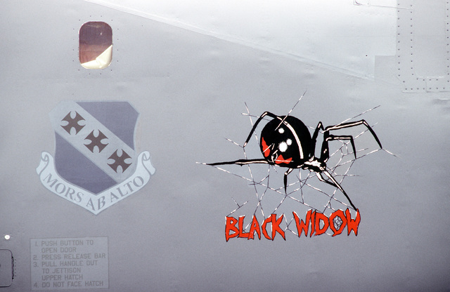"Nose art of B-1B Lancer bomber, ""Black Widow,"" a back-up aircraft for the four bombers of the 9th Squadron, Dyess Air Force Base, Texas which will launch during exercise CORONET BAT. This mission is a non-stop around the the world flight. The exercise will include five in-flight refuelings and three ""no-drop"" bombing exercises. When completed this will establish the first (unofficial) world record in this weight category"