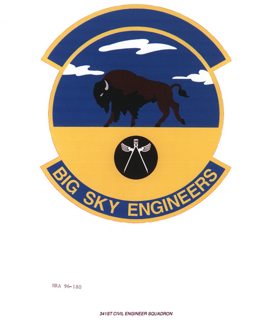 AIR FORCE ORGANIZATIONAL EMBLEM 314th Civil Engineer Squadron Exact Date Shot Unknown
