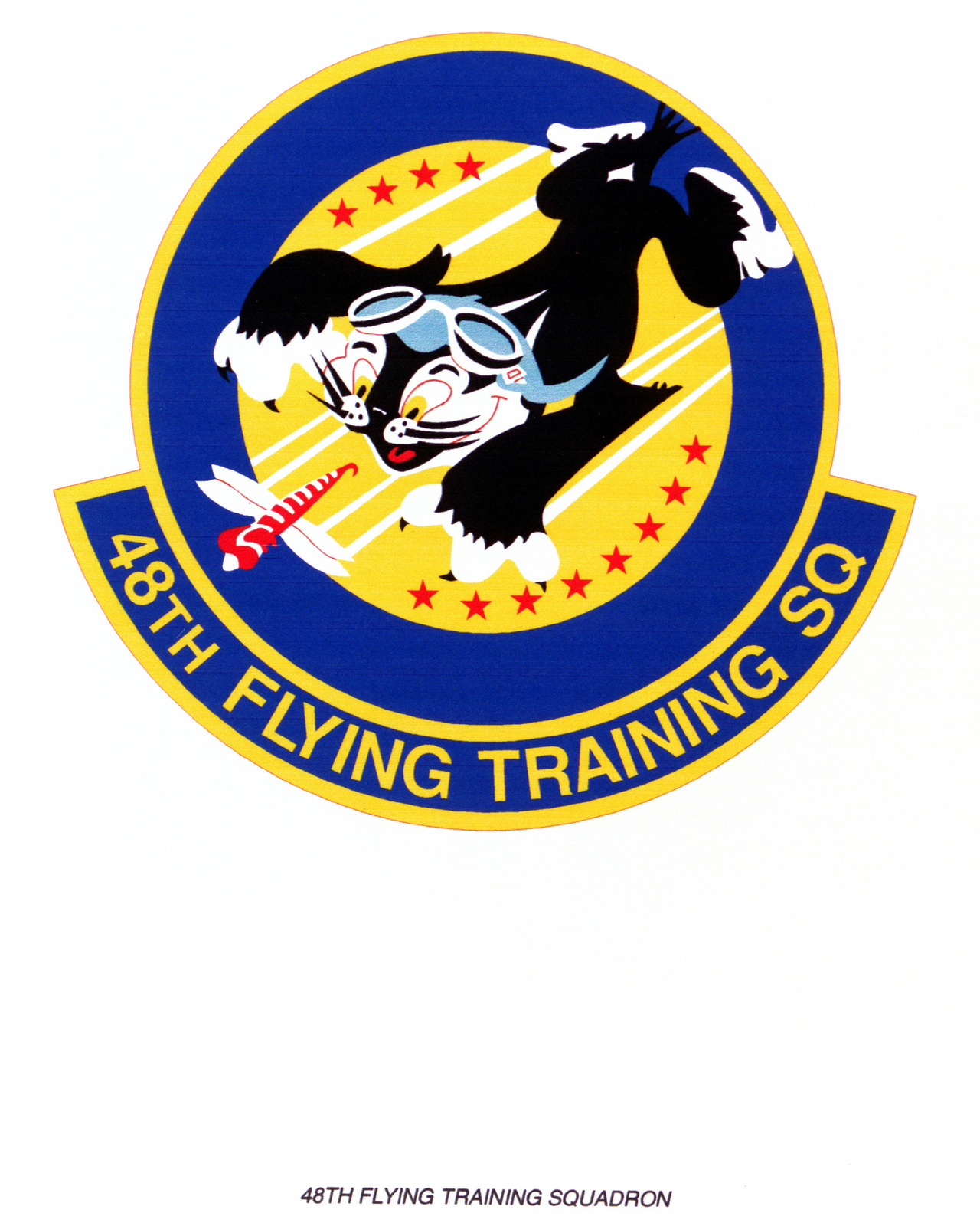 Air Force Organizational Emblem. 48th Flying Training Squadron Exact Date Shot Unknown