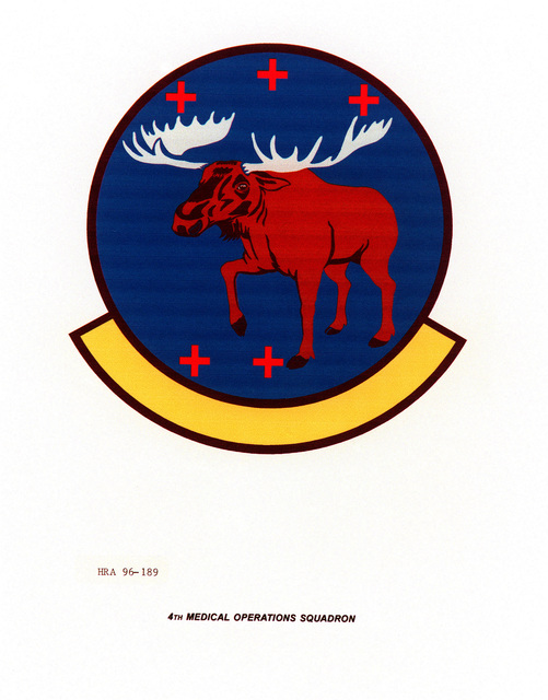 AIR FORCE ORGANIZATIONAL EMBLEM 4th Medical Operations Squadron Exact Date Shot Unknown
