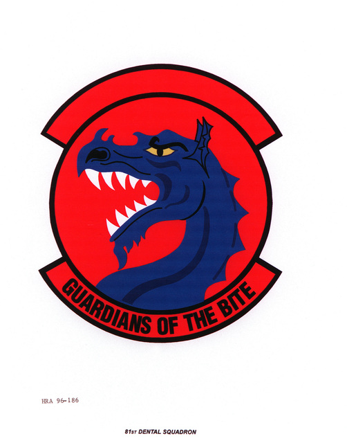 AIR FORCE ORGANIZATIONAL EMBLEM 81st Dental Squadron Exact Date Shot Unknown