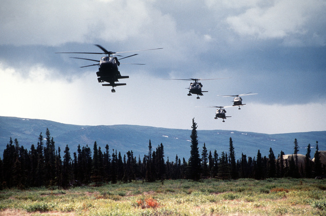 Several UH-60 Black Hawk (Blackhawk) helicopters, from Fort Wainwright, Alaska, hover gracefully over the treeline at Donnelly drop zone during the start of an air assault. Exact Date Shot Unknown