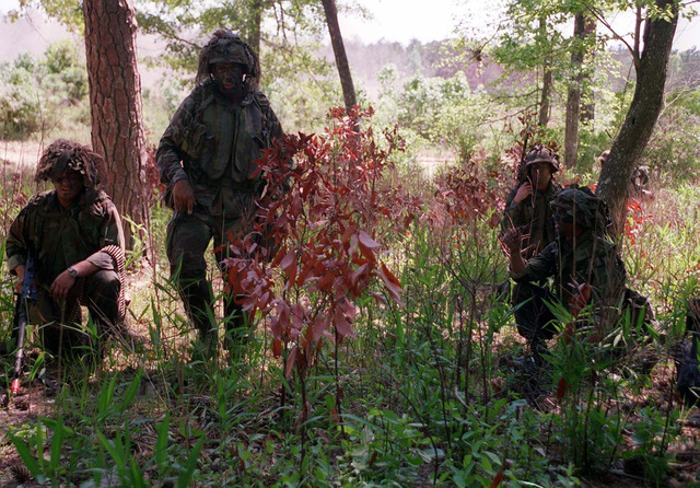 Marines from 3rd Battalion, 8th Marine Regiment, 2d Marine Division, move to various security positions in the woods after securing their objective in the vicinity of GP 40