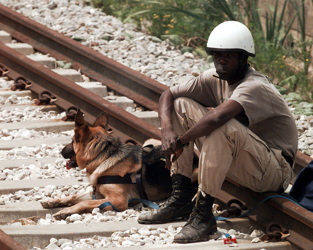 On the afternoon of June 6th, 1996, a member of the Norwegian bomb disposal team sits on the railroad track to take a break with his bomb dog before entering into a tunnel near the town of Ceparde, Serbsca, to search for mass grave sites in support of Operation Joint Endeavor