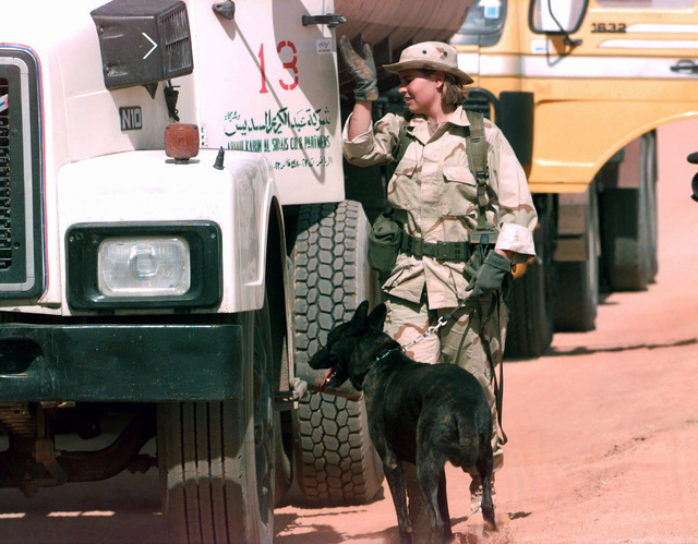 SENIOR AIRMAN Tammy Kirksey, an Explosives Detector Dog Handler, from the 2nd Security Police Squadron, Barksdale AFB, Louisiana, and her dog Jacky search a contracted vehicle at the Echo 6 Entry Control Point Gate, at Prince Sultan AB, Saudi Arabia. AIRMAN Kirksey is deployed as part of the Security Police Contingent at the base providing security support until a more permanent squadron is established for the base during Desert Focus, the relocation of Operation SOUTHERN WATCH personnel. SOUTHERN WATCH monitors the no-fly restriction over Iraq