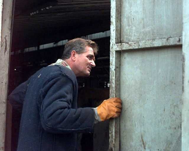 Borisic Arif, a workman at the Sarajevo Cattle Yard, watches as cows (not shown) are loaded into trucks. The cows will be distributed to farmers in Bosnia and Herzogovina in support of Operation JOINT ENDEAVOR