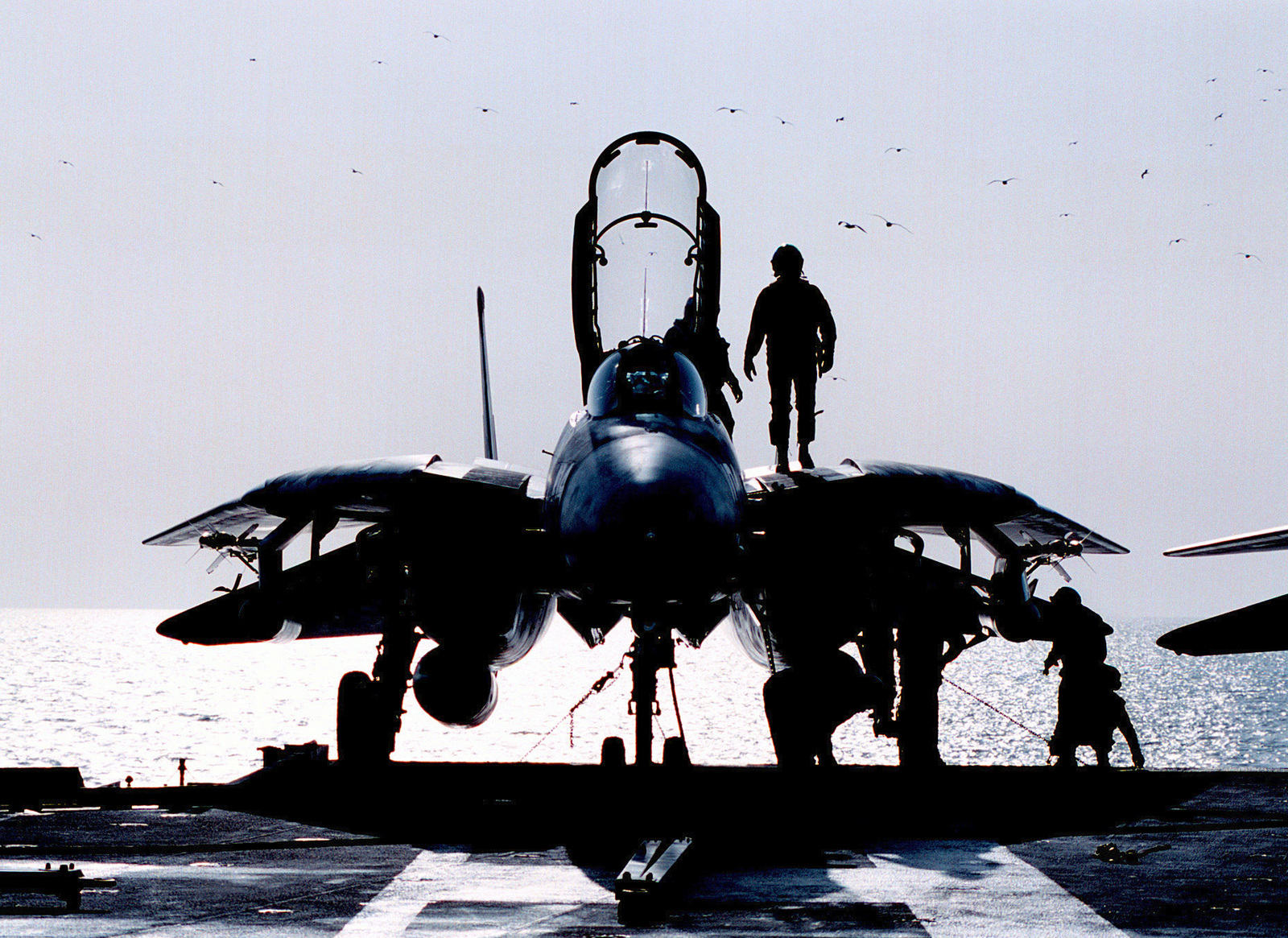 "A United States Navy pilot from Fighter Squadron One Zero Two (VF-102) gives his F-14B ""Tomcat"" a pre flight inspection. The nuclear powered aircraft carrier USS GEORGE WASHINGTON (CVN 73) and her embarked Carrier Air Wing One (CVW1) are operating in the Persian Gulf to support UN sanctions against Iraq. Operation Southern Watch, 2 February 1998. (Duplicate image, see also DNSD0003412 or search 980202N2302H003)"