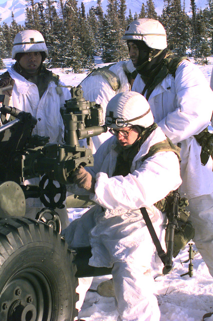 Soldiers (in winter attire) of the 4th Battalion, 11th Field Artillery, Fort Richardson, Alaska, set up the 105mm Howitzer cannon after the mass air drop at Donnelly Drop Zone during NORTHERN EDGE '98, an annual Joint Chiefs of STAFF winter exercise involving air and ground units of all services