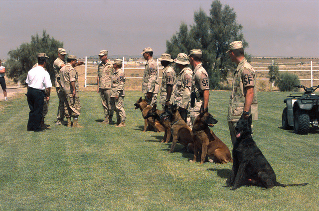 U S Air Force (USAF) Security Forces Dog handlers assigned to the 4406th Operations Group (OG), put their dogs through their paces before a group of senior Kuwaiti military officials, at Al Jaber Air Base, Kuwait, in support of Operation SOUTHERN WATCH 1998