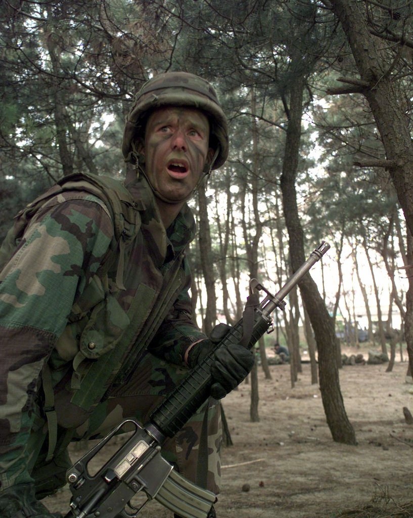 U.S. Marine CPL. Chad McMillan, gives out orders to his squad while holding their tree line position just after landing on shore at Jongsa-dong beach in Republic of Korea, Oct. 31, 1998. McMillan and other 2nd Battalion, 8th Marine Corp troops landed on the beach via helicopter and Landing Craft Air Cushion (LCAC) Amphibious Vehicles in support of Foal Eagle '98. Foal Eagle '98 is a deployment exercise that takes place once a year in Korea. (U.S. Army photo by SPECIALIST Joel C. Miller) (Released)