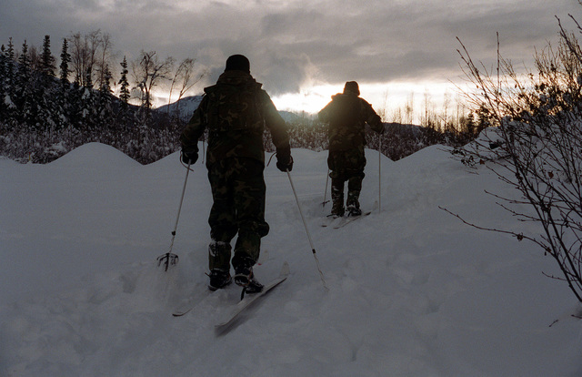 Marines from the 2nd Reconnaissance Battalion, 2nd Marine Division, on a cross-country ski patrol during Deployed For Training (DFT) cold weather training