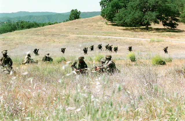 US Marines with ruck sacks and from Second Battalion Fifth Marines extract to rally point to take security positions during Operation Sea Horse Wind at Fort Hunter Liggett in Jolon, California