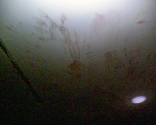 These bloody finger prints and blood streaks on the ceiling of a bloody basement in an unmarked Islamic Resistance Center building, located in the city of Fallujah, Al Anbar Province, Iraq, on Dec. 2, 2004. This basement may have served as a torture chamber and is being shown to the foreign media as part of their tour of various sites within the city of Fallujah to see the reconstruction efforts going on after the November battle between Multinational Forces and insurgents in the city of Fallujah, during Operation Iraqi Freedom. (U.S. Marine Corps photo by CPL. Theresa M. Medina) (Released)