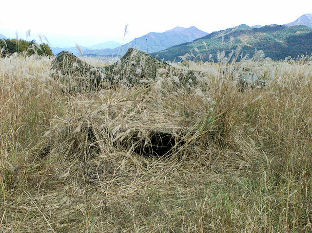 A well camouflaged bunker position at Gun Position 99, East Camp Fuji, Japan. Part of 3D Marine Division unit's, nine firing day relocation shoot, designed to enhance military occupational specialty proficiency within the artillery field