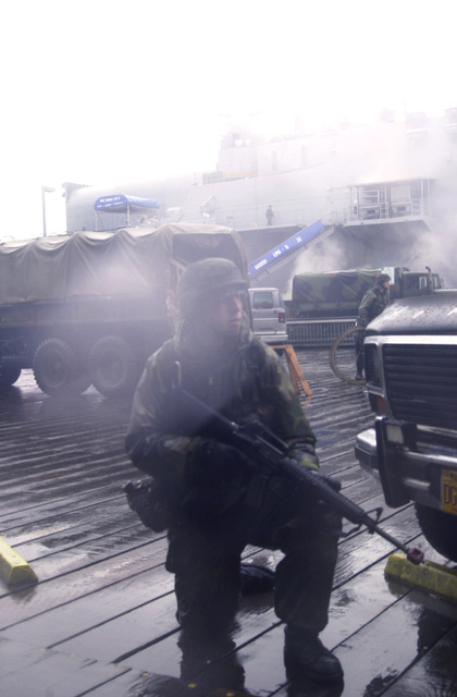 In swirling winds, fog and pounding rains, Sergeant Matt Roeber of the 297th Army Infantry Alaskan National Guard, Alpha Company, helps provide dock security support for the USS OGDEN (LPD 5) (not shown) while deployed to Ketchikan, Alaska, during Exercise NORTHERN EDGE 2001. Northern Edge is Alaska's premier joint training exercise and it lasts for two weeks. Over 10,000 Canadian and United States forces combine to practice protecting Alaska and it's borders