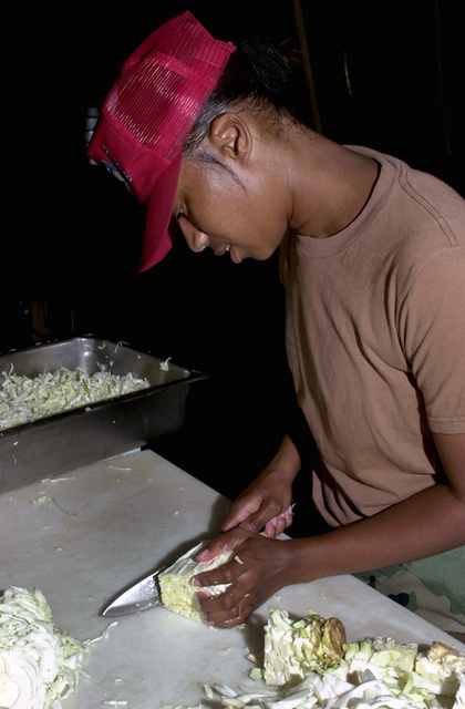 SENIOR AIRMAN (SRA), Danielle Hernandez, USAF, 823rd Red Horse Services Squadron, prepares cabbage for dinner at base camp Concepcion, Paraguay, during Exercise NEW HORIZONS. Under Combined Task Force Guarani Springs, joint service personnel are conducting engineering and medical operations in Paraguay, enabling required joint training. The task force will renovate, construct and improve the infrastructures of four schools and water well and also conduct three Medical Readiness Training Exercises (MEDRETS), as agreed to by the government of Paraguay