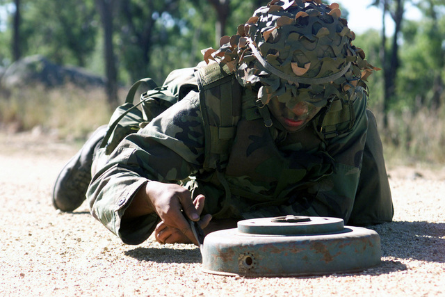 Lance Corporal Nick Jamilla, Combat Support Company, 3rd Battalion, 3rd Marine Regiment, uncovers an enemy antitank mine as his unit attemps to breach a minefield during Exercise TANDEM THRUST 2001. TANDEM THRUST is a joint/combined exercise with Australia designed to enhance the ability of US and Australian forces to respond to short notice regional contingencies. This biannual exercise is being held in the vicinity of Shoalwater Bay training area, Queensland, Australia