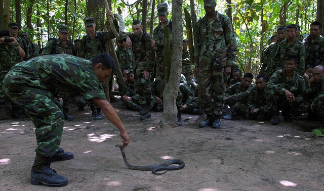 Soldiers from the United States Armys 1ST Special Forces Group, Fort Lewis, Washington, receive live field training in the art of Cobra snake manipulation, by Royal Thai Army personnel