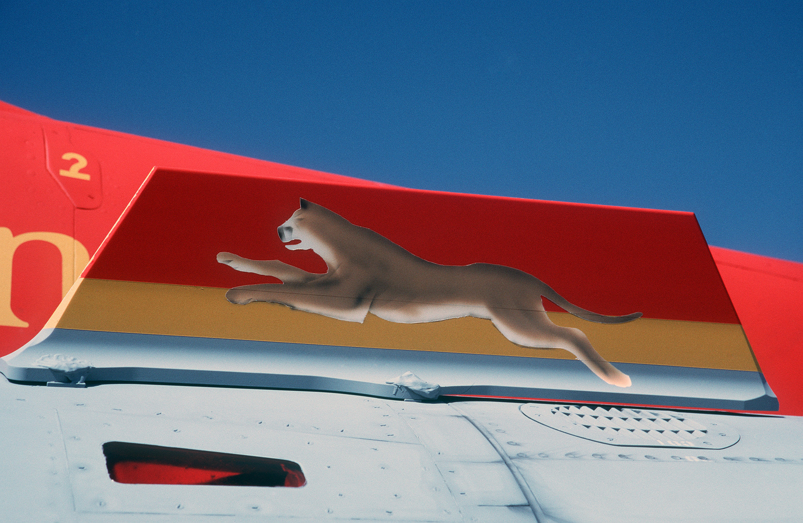 Close up view show a leaping cougar painted on the wing fence of a Canadian Armed Forces (CFA) CF-188B aircraft the 410 Tactical Fighter (Operational Training) Squadron during Tiger Meet of the Americas. The Inaugural Tiger Meet of the Americas brought together flying units from throughout North America that have a Tiger or large cat as their unit symbol. The Tiger Meet of the Americas closely resembles the North Atlantic Treaty Organization (NATO)/Europe Tiger Meet in its goal of fostering camaraderie, teamwork and tactics familiarization