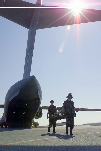 Members of the 146th Aeromedical Evacuation Squadron, California Air National Guard, deployed to Comox Canadian Forces Base, carry simulated patients from the aft-section of a C-17 Globemaster from McChord Air Force Base, during SEAHAWK 2001