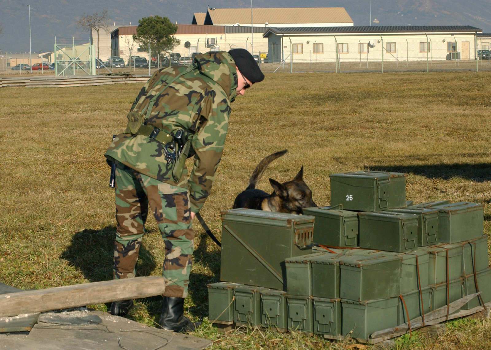 STAFF Sergeant (SSGT) Dominic Vecchi, USAF, dog handler, 31st Security Forces Squadron (SFS), Aviano AB, Italy, guides his K-9, Lakya, a Belgian Malamois, through its paces, detecting for a possible bomb in this stack of ammo cases. The working dog team at Aviano undergoes weekly training for bomb detection and attack procedures