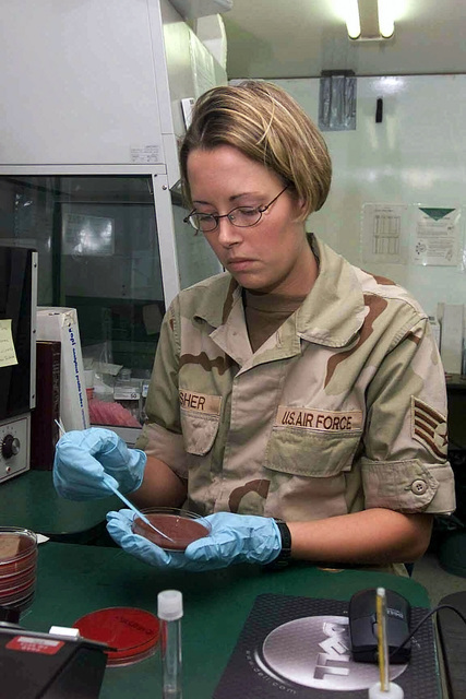 STAFF Sergeant (SSGT) Amanda Fisher, 363rd Expeditionary Medical Group (EMG), places samples of food in Petri dishes to find possible harmful bacteria, at Prince Sultan Air Base, Kingdom of Saudi Arabia, in support of Operation SOUTHERN WATCH 2002
