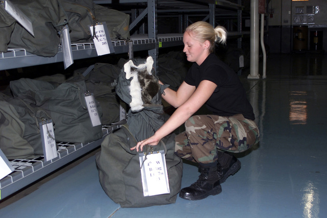 During an annual report on mobility bags AIRMAN (AMN) Megan Merritt, with the 4th Supply Mobility Section, Seymour Johnson Air Force Base (AFB), North Carolina, performs a random inventory check of B-Bag, in order to insure an accurate accounting