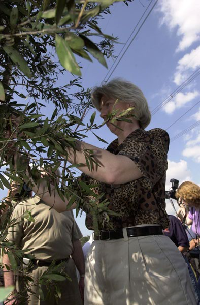 Earth Day-related visit by Secretary Gale Norton to south Florida to view work of new facility in Davie devoted to eradication of invasive species andprotection of fragile wetlands ecosystems, and to view ceremonial release into the Everglades of a sap-sucking bug to fight harmful spread of melaleuca plant