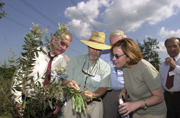 Officials on hand for visit of Secretary Gale Norton to south Florida to view work of new facility in Davie devoted to eradication of invasive species and protection of fragile wetlands ecosystems, and to view ceremonial release into the Everglades of a sap-sucking bug to fight harmful spread of melaleucaplant
