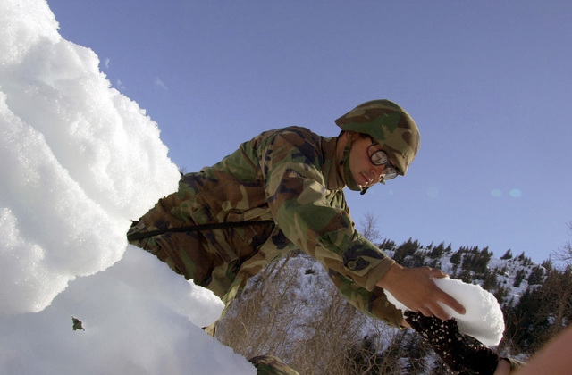 PETTY Officer Third Class (PO3) Robert Orneala of the Naval Mobility Construction Battalion 4 (NMCB4) Port Hueneme, California, passes snow blocks while building barriers to keep a checkpoint location hidden near the Alyeska Pipeline Station, during a civilian and military mass causality exercise at the Alyeska Pipeline in Valdez, Alaska, hosted by the Alaskan Command, in support of exercise NORTHERN EDGE 2002