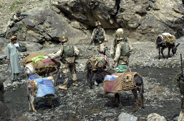 US Army (USA) Soldiers assigned to Alpha Company, 3rd Battalion, 187th Infantry Regiment, 101st Airborne Division, detain and search a mule train leaving from a village for possible weapons or documents near Narizah, Afghanistan, during Operation ENDURING FREEDOM