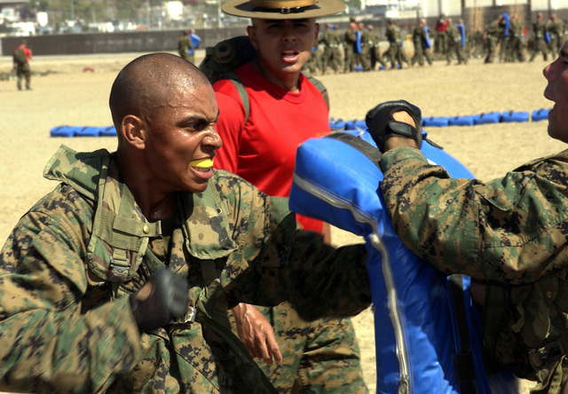 Recruits from 1ST Battalion, C Company, Marine Corps Recruit Depot (MCRD) San Diego practice punching techniques during the Martial Arts Program (MCMAP) training