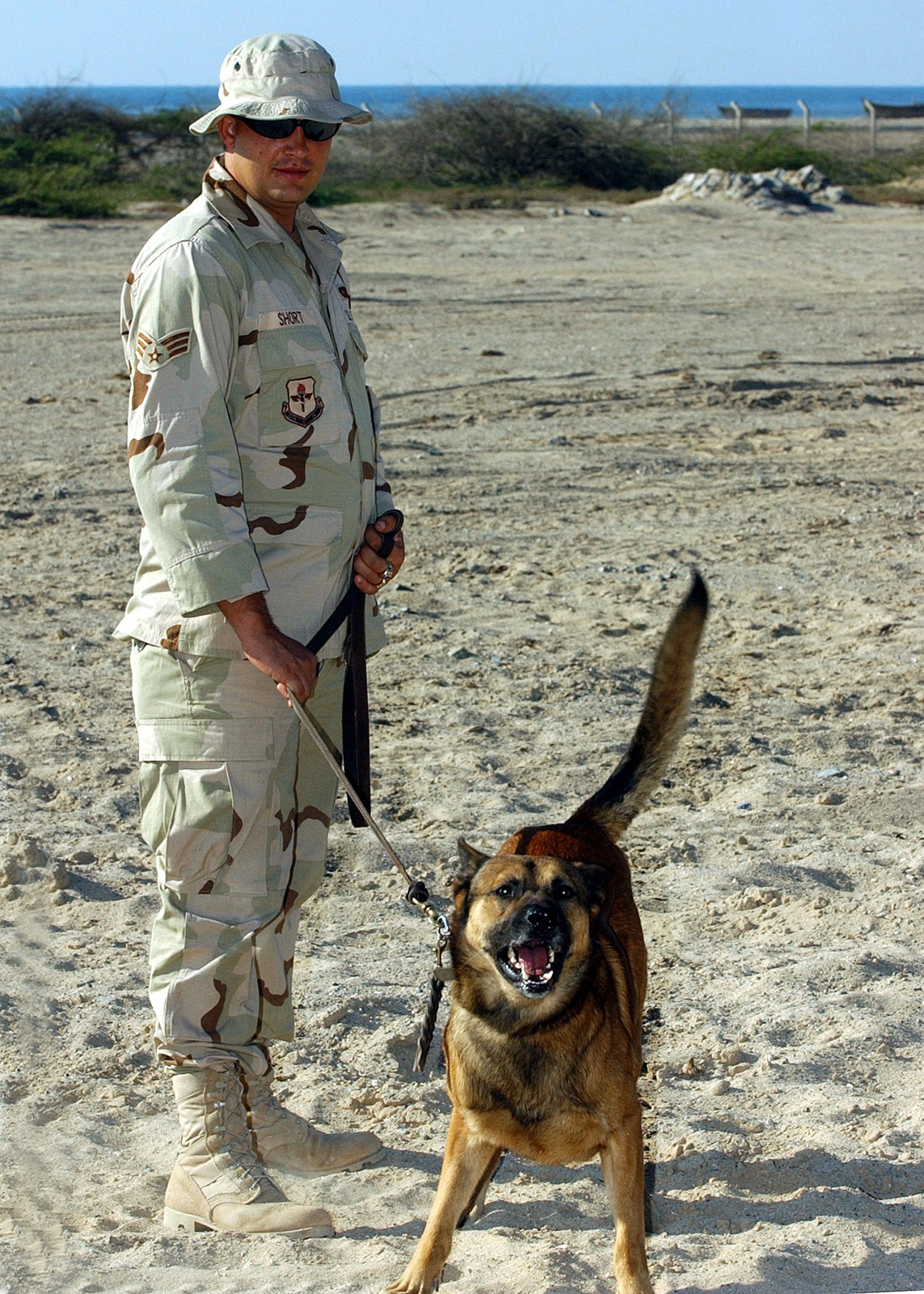 US Air Force (USAF) SENIOR AIRMAN (SRA) Daniel Short, Dog Handler, 321st Expeditionary Security Forces Squadron, and his Belgian Malinois, Carlos prepare to do a vehicle search at a forward-deployed location during Operation ENDURING FREEDOM